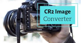 cr2 converter