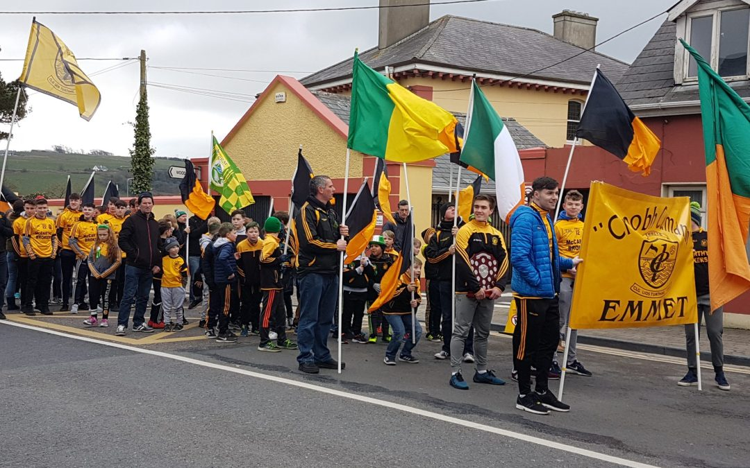 Emmets show their colours for parade