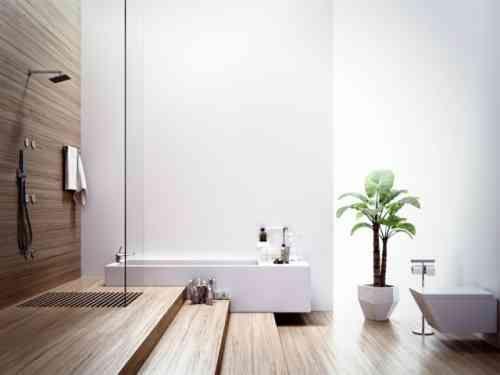 plante retombante pour salle de bain plantes retombantes fleurs et vivaces u ides pour un. Black Bedroom Furniture Sets. Home Design Ideas