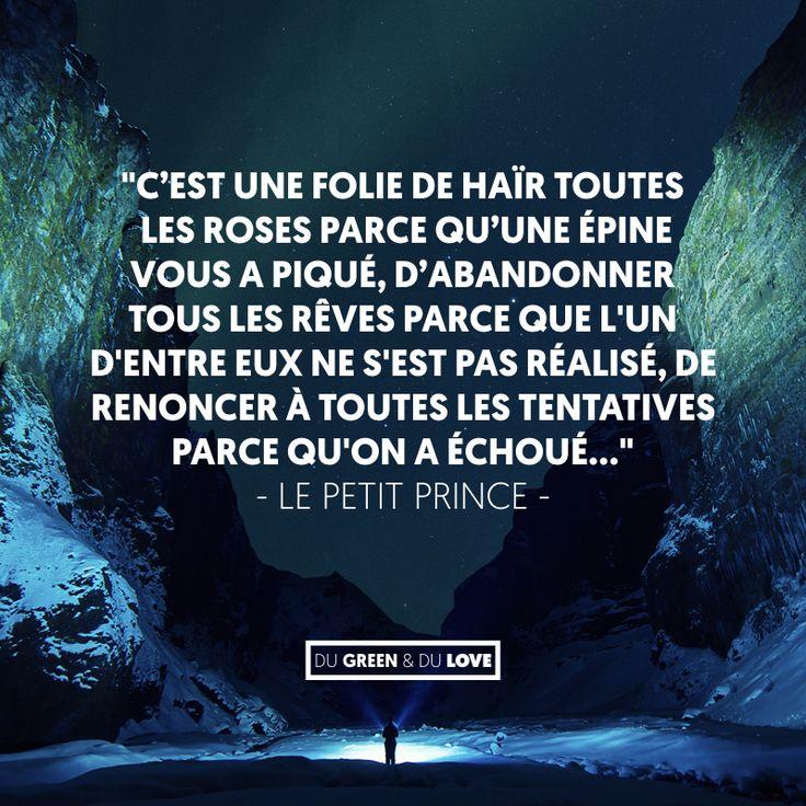 Citation Citation Inspirante Cest Une Folie Le