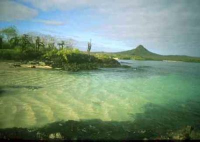 Santafeislandgalapagos