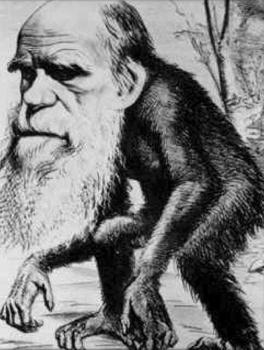 Darwin Aped
