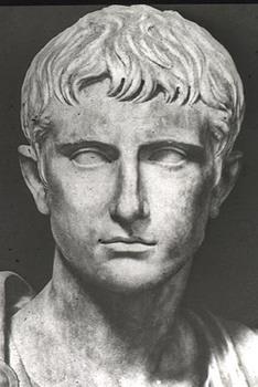 Augustus Prima Head