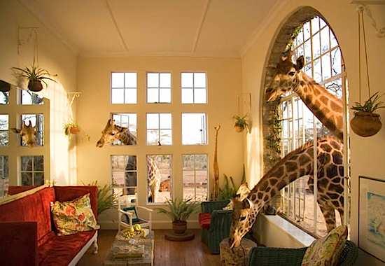 giraffe_manor_01.jpg