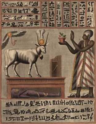 Animal-Domestication-Egypti