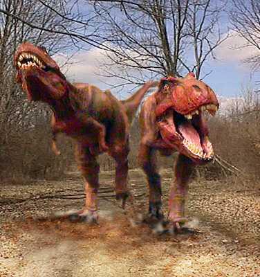 Dinosaurs-Footprints