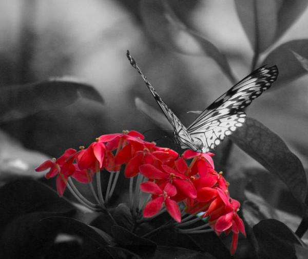 Screen Shot 2012-12-23 At 3.21.00 Pm
