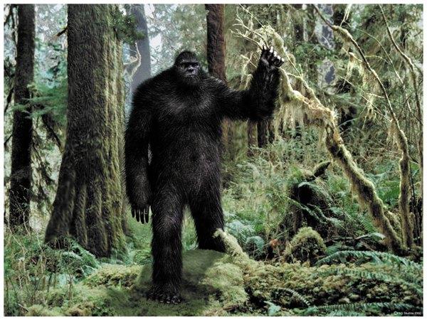 So Cal Bigfoot