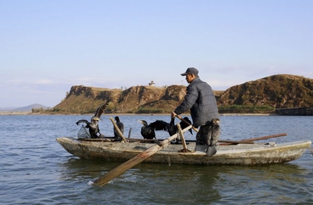 A-North-Korean-fisherman-pilots-a-boat-with-cormorants-perched-onboard-in-the-Yalu-River-near-the-North-Korean-town-of-Sinuiju-facing-the-Chinese-border-city-of-Dandong-on-October-23-2012.-ReutersAly-Song-650x426