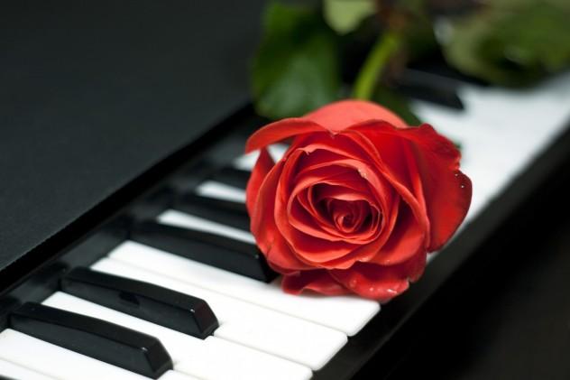 Rosa  at  keys  piano