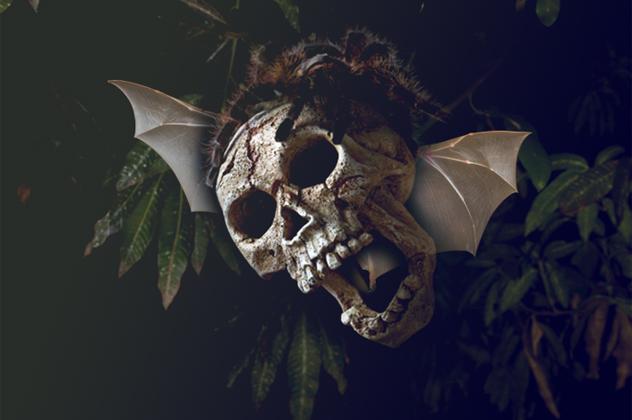 6- flying skull