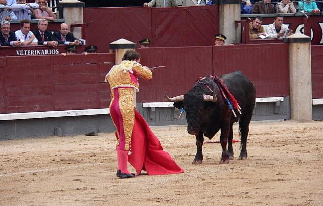 4-bullfighting