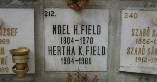 4-noel-field