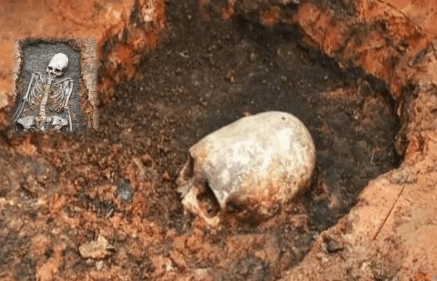 Long-Skulled Skeleton