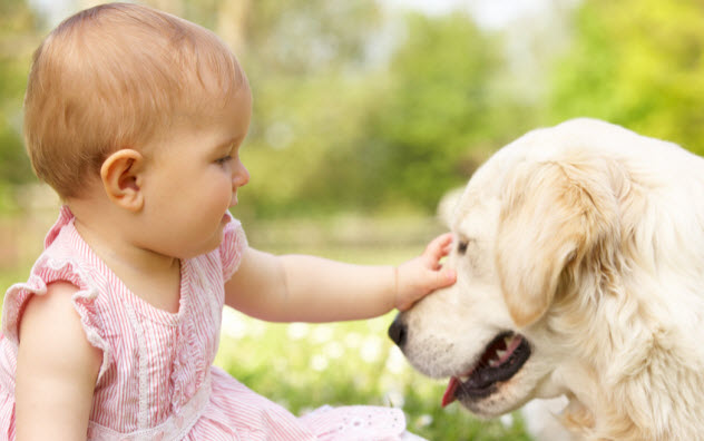 2a-baby-with-dog_23892014_SMALL