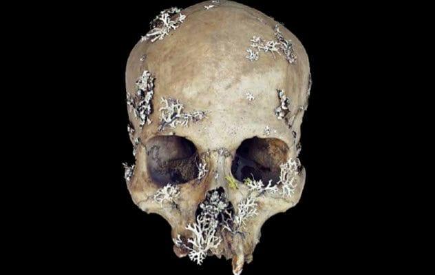 8-skull-lichen