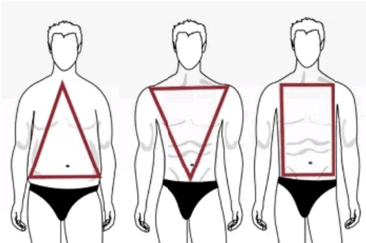 Most Popular Types Of Male Body Shape