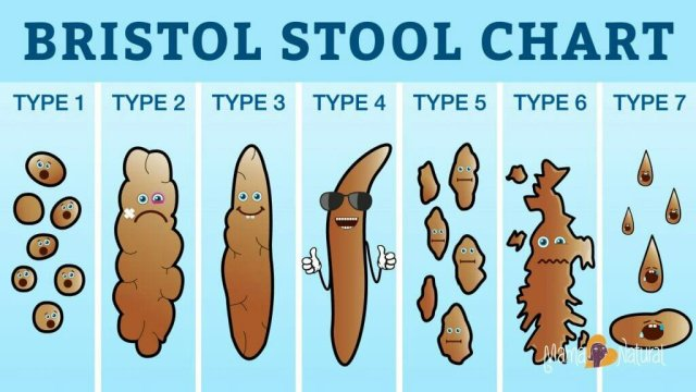 What the Shape Of Your Faeces Says About You