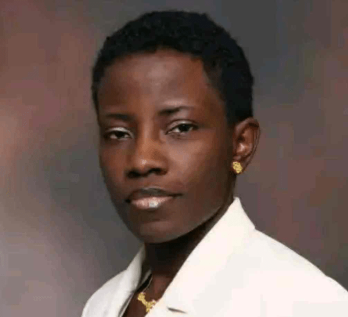 Dehlia Umunna Becomes First Nigerian to be Appointed a Professor at Harvard Law School