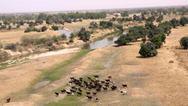 Herders, Farmers Clashes Claimed 7,000 Lives in Parts of Nigeria in Five Years - U.S. Report