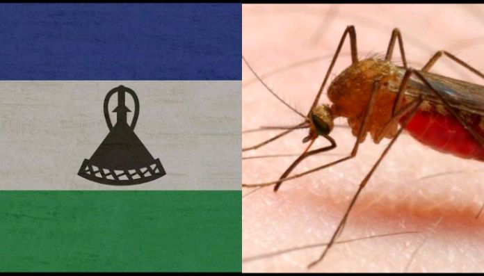 Lesotho is among the Only Malaria-free Countries in Africa