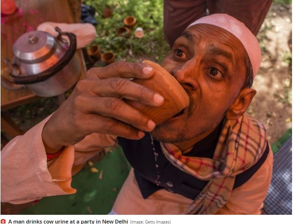 Indian Hindus Organize Cow Urine Drinking Party to Prevent Coronavirus