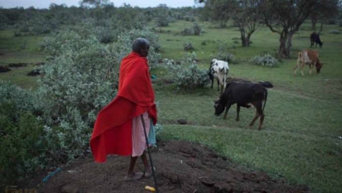 Creation Story of the Maasai People of East Africa