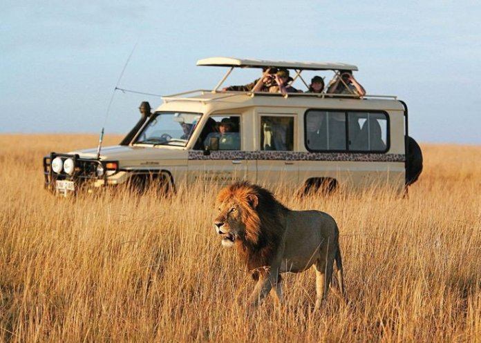Kenya Named Africa's Leading Tourists Destination in 2020