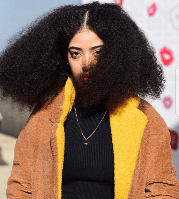Simone Williams, Meet the Woman With the Largest Afro in the World