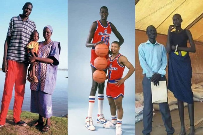 Meet the Dinka People of South Sudan, the Tallest People in Africa