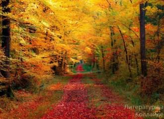 Боголюбов Н: Горит и плачет лес осенний