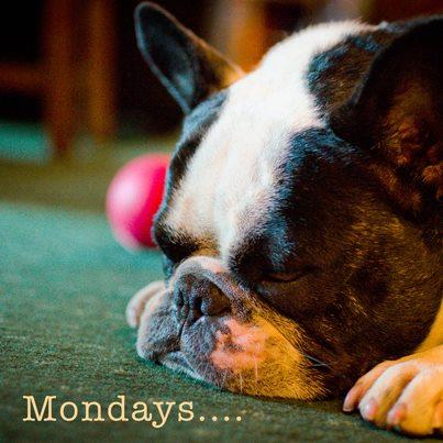 Bubba Mondays