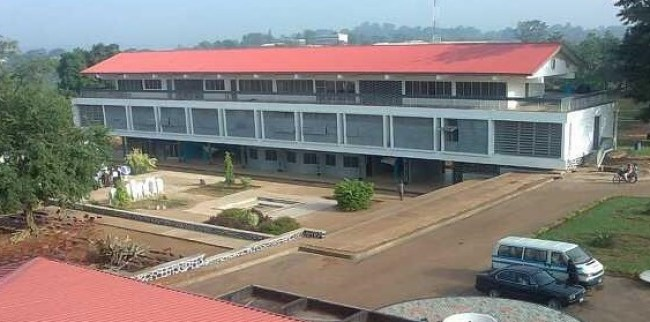 International School Ibadan