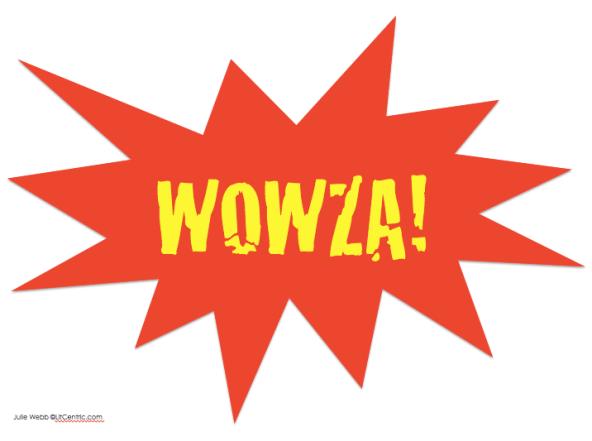 Wowza! Game Makes Grammar Fun