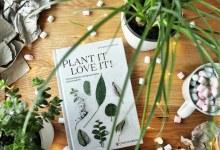 Rezension | Caro Langton & Rose Ray – Plant it love it! Zimmerpflanzen erfolgreich teilen und vermehren.