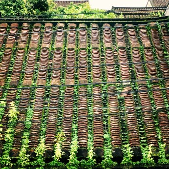 Roofs, Hoi An
