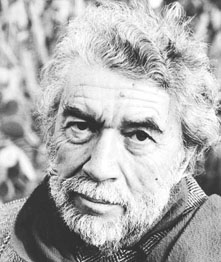 alain-robbe-grillet-1-sized