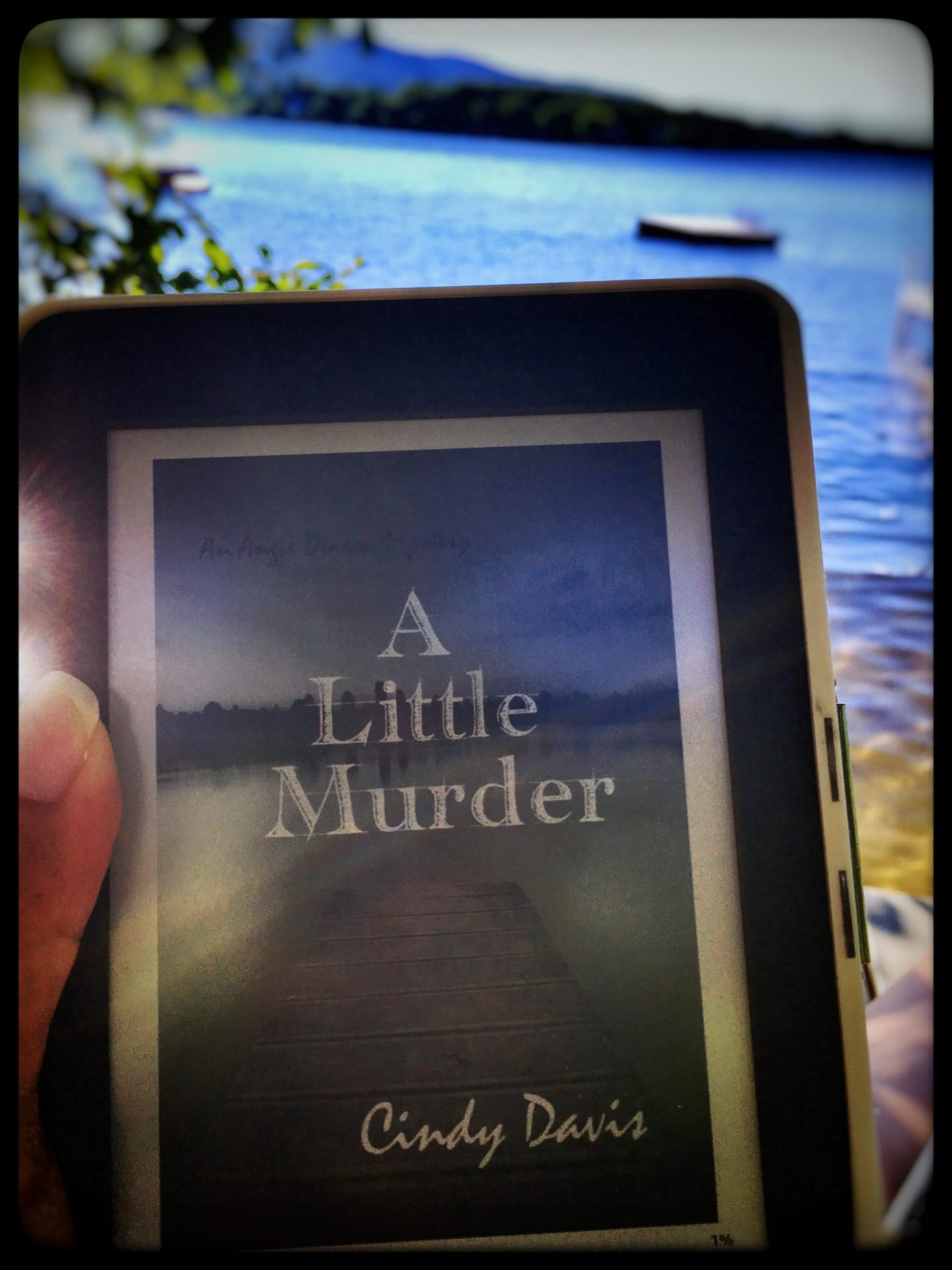 A Little Murder by Cindy Davis