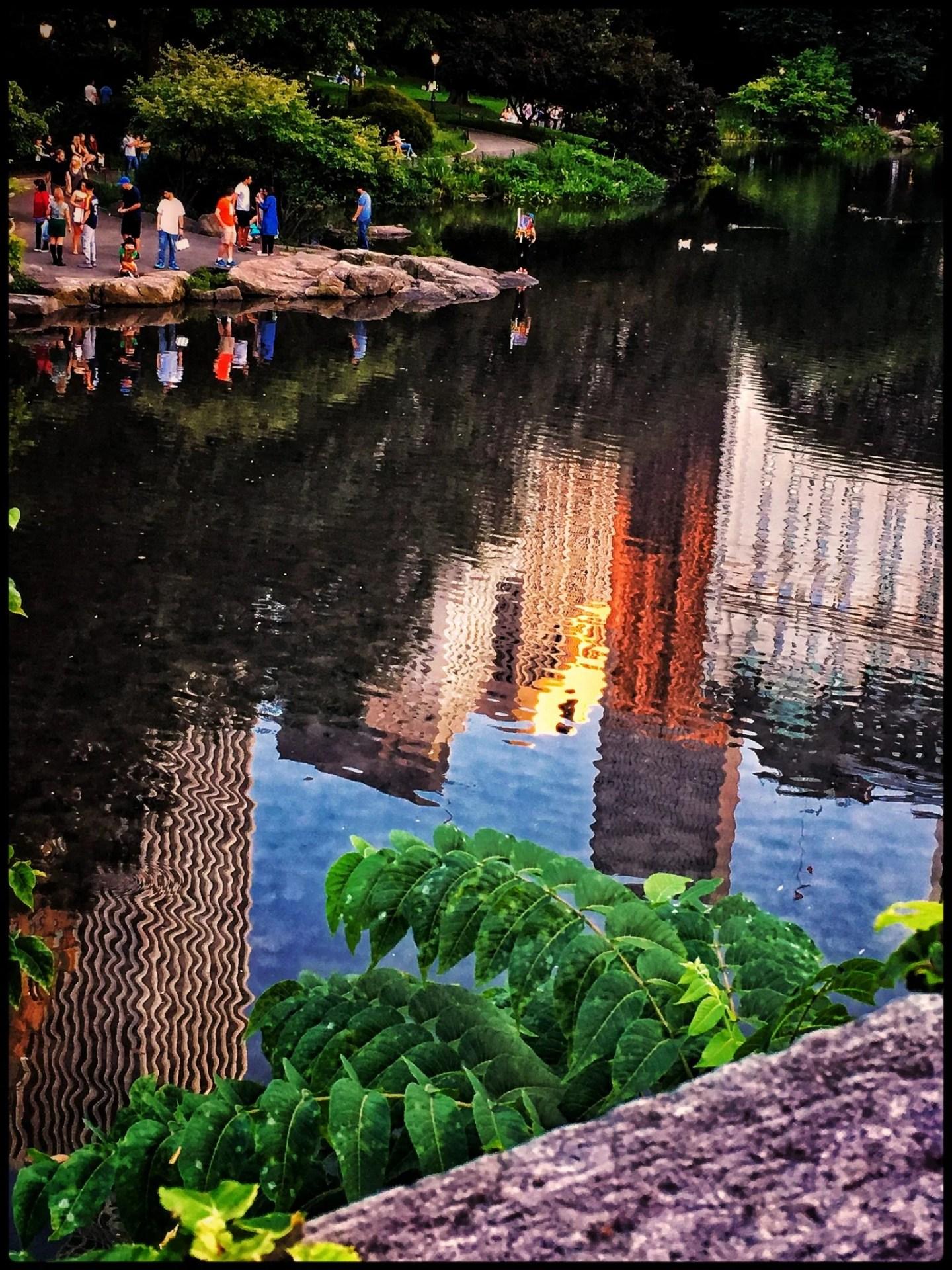 Central Park Upside Down