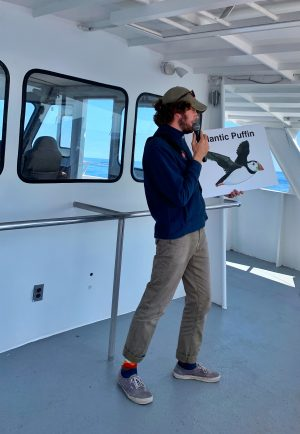 Our whale watching tour guide