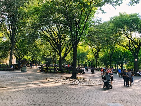 Central Park, The Mall