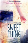 Sweet Things by Renee Carlino: Promotion and Giveaway
