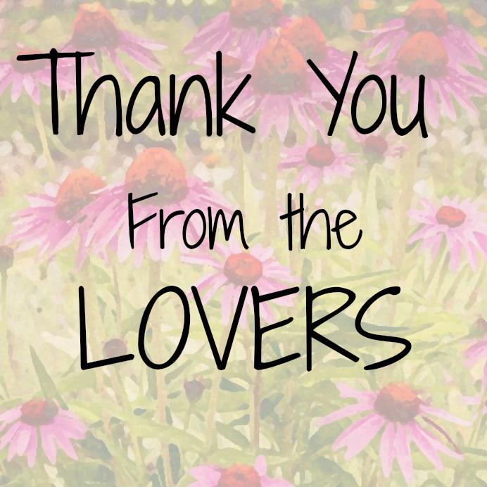 Corn Flowers Thank You