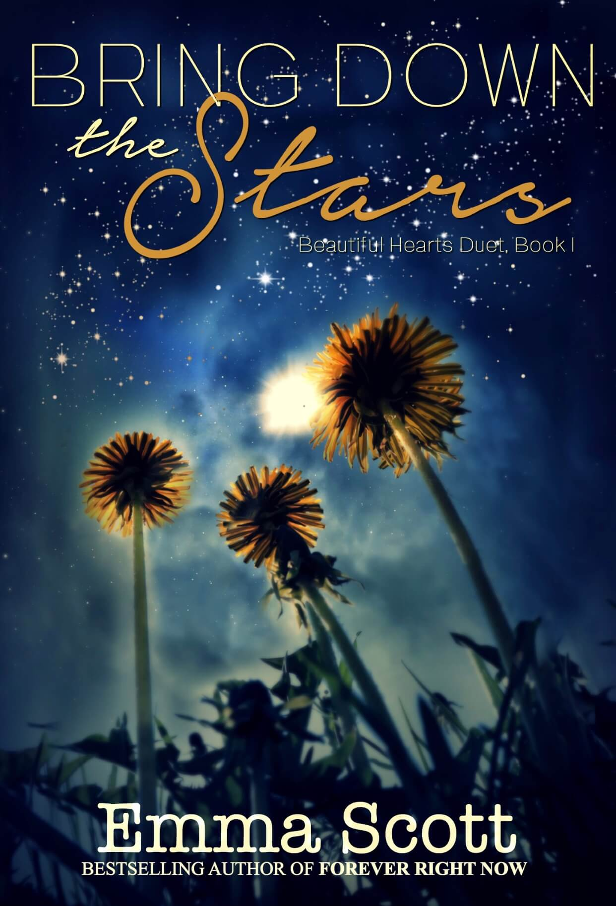 * Bring Down the Stars (Beautiful Hearts duet book 1) by Emma Scott * Blog Tour * Excerpt * 5 Star Review *