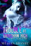 Release Blitz * Trouble at Brayshaw High (Brayshaw High book 2) by Meagan Brandy * It's Live * Read Chapter 1 Here!!