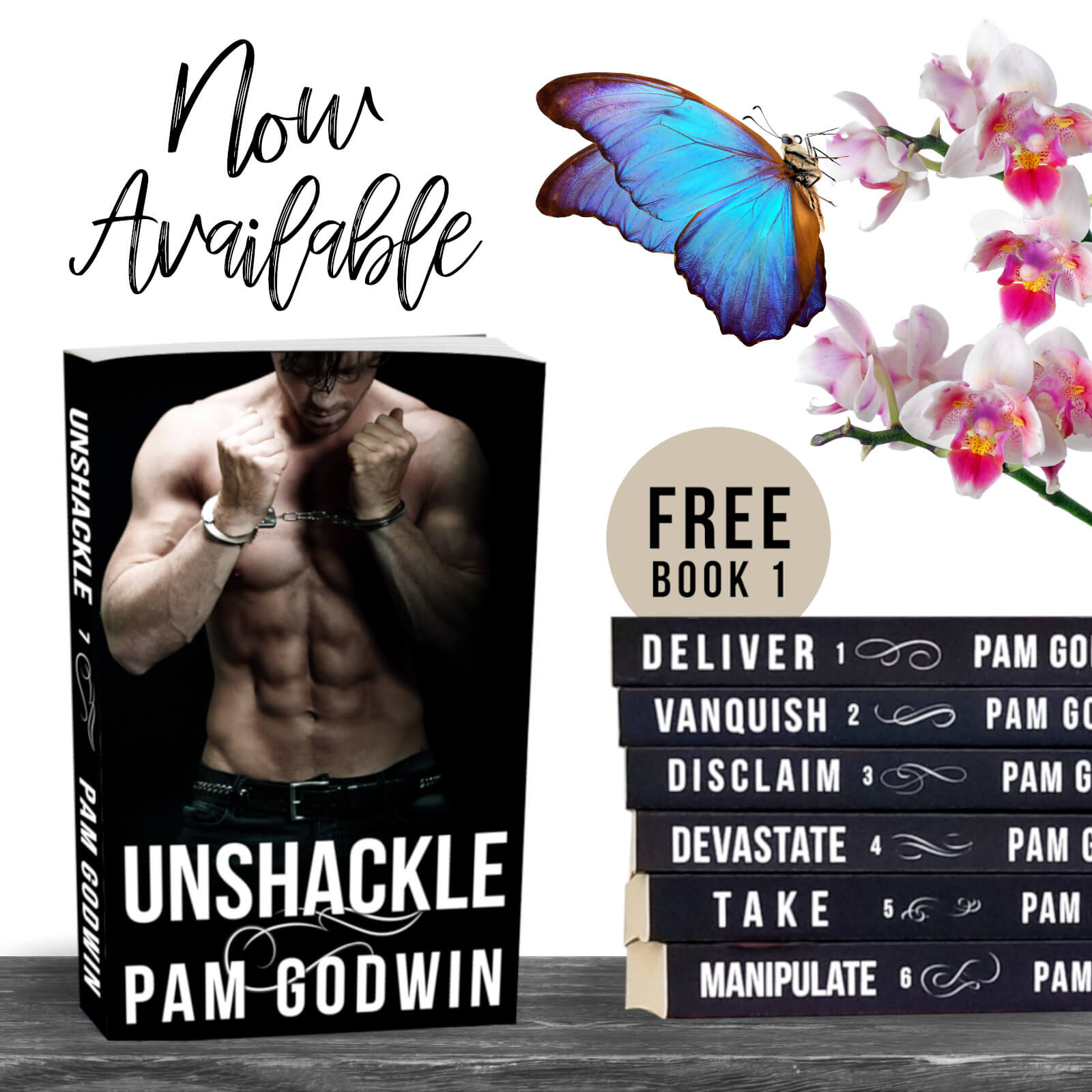Release Day * Unshackle (Deliver series book 7) by Pam Godwin * Book Review *
