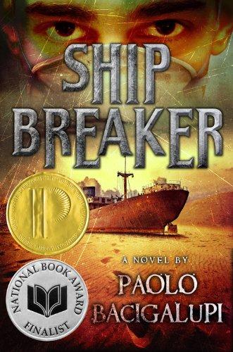 Ship Breaker is a post-apocalyptic novel set on the US Gulf Coast - it won the Michael L. Printz award.
