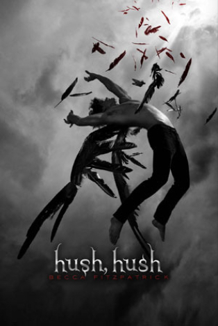 I Re-read Hush, Hush by Becca Fitzpatrick and This is What Happened