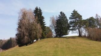 Waiern_Kärnten_Glantschnig Hügel, Walter Pobaschnig