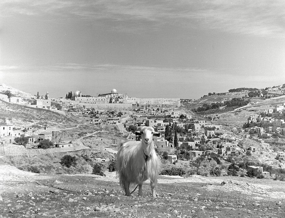 Jerusalem 1945